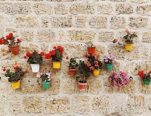 décoration mur extérieur terrasse